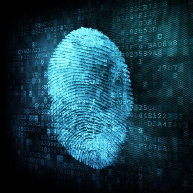 data_fingerprint_sqaure